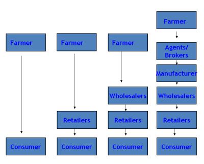 sugar supply network Supply chain management is network of facilities and  figure 2 material flow in sugarcane supply chain process in sugar industry legislation growers are.